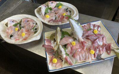 本日の釣った魚定食